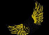 Logo-Frigo&Co_détouré